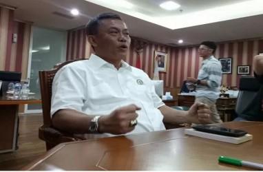 Ketua DPRD DKI Sesalkan Penebangan Pohon Tua