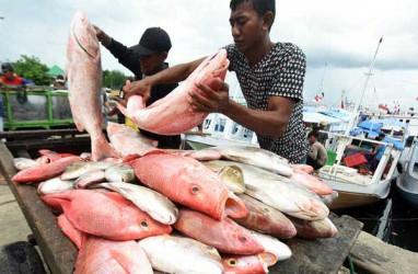 5 Nelayan Jayapura Dihukum Denda Rp63 Juta oleh Pengadilan PNG