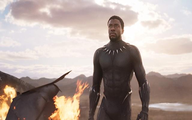 Chadwick Boseman dalam film Black Panther (2018)  -  IMDb