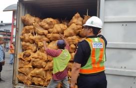25 Kontainer Kelapa Ditolak Thailand, Eksportir Sumsel Rugi Miliaran