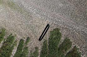 Revitalisasi Tahap Keenam Danau Limboto Selesai Akhir…