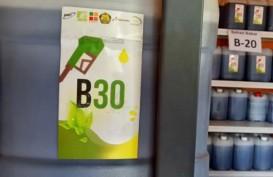Pertamina dan 10 Badan Usaha Mulai Uji Coba B30
