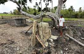 Batu Menhir Ditemukan Petani Gunungkidul, Dikira Batu Biasa