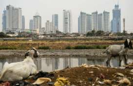 2020, OECD Tetap Proyeksikan Pertumbuhan Ekonomi Indonesia 5 Persen