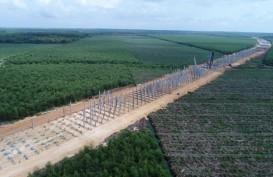 Ini Tantangan Tenaga Survei Proyek Tol Pekanbaru-Dumai
