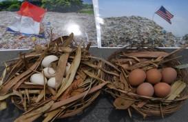 KLHK Dalami Isu Kontaminasi Dioksin pada Tahu dan Telur Ayam