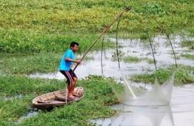 Pemanfaatan Lahan Rawa Lebak Sumbang PAD OKI Rp6,8 Miliar