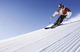 2 Orang Tewas Karena Longsor Salju di Pegunungan Alpen