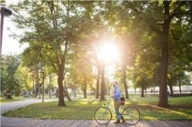 Riset : Ruang Terbuka Hijau Bantu Warga Kota Hidup…