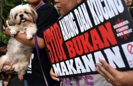 Solo Raya Tempat Pembantaian Anjing, Solusi Akhir Perlu Waktu