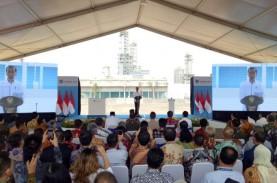 Harapan Jokowi Hapus Impor Kimia Dinilai Bisa Tercapai