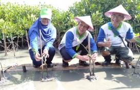 Mangrove Edupark, Upaya Pertamina Selamatkan Pesisir Semarang