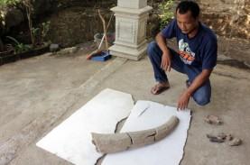 Warga Bantengan Temukan Fosil Banteng Purba