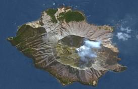 Gunung Berapi Meletus di Lepas Pantai Selandia Baru