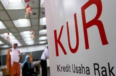 Jokowi Ingin Penyaluran KUR Digeser, Dari Perdagangan ke Pertanian