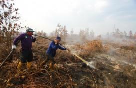 Riau Siaga Karhutla Mulai Januari 2020