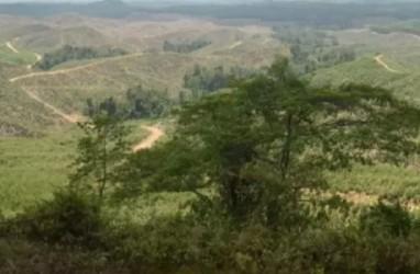 PENGADAAN LAHAN : Bank Tanah Masuk Omnibus Law
