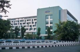 Ini Rumah Sakit di Jakarta yang Sediakan Serum Anti-Bisa Ular