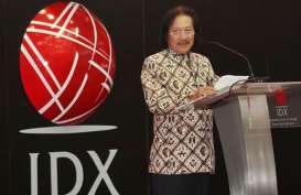 Punya 650 Anggota, AEI Dukung Penguatan Pasar Modal Indonesia
