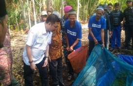BRG dan Bukalapak Kerja Sama Penguatan Ekonomi Desa