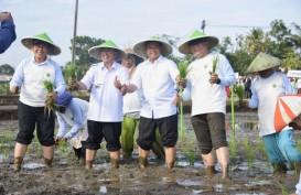 Cianjur Jadi Lokasi Gerakan Tanam Padi Masa Tanam 2019/2020
