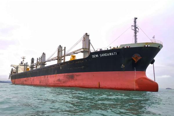 Kapal Induk Dewi Gandawati milik PT Pelita Samudera Shipping Tbk. saat acara serah terima di Batam, Kamis (19/12/2019). - Bisnis/Muhammad Ridwan