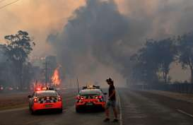 Suhu Udara Capai 45 Derajat, Sydney Dikepung Kebakaran Hutan