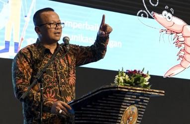 Soal Lobster, Edhy Prabowo Sebut Sudah Koordinasi Dengan Presiden