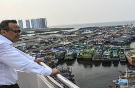 Edhy Prabowo: Belum Ada Keputusan Final Soal Ekspor Benih Lobster