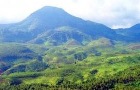Menikmati Sensasi Liburan Tahun Baru di Pegunungan Bandung Raya