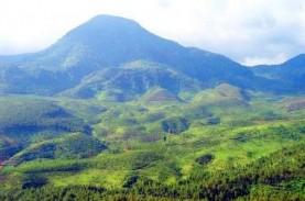 Menikmati Sensasi Liburan Tahun Baru di Pegunungan…