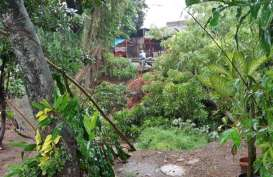 Banjir Menerjang, Waspada Longsor & Aliran Listrik!