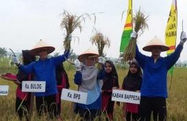 Kenaikan Nilai Tukar Petani Riau Tertinggi di Sumatra