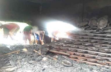 Gudang Kerajinan Kayu untuk Ekspor Terbakar, Kerugian Rp1 Miliar