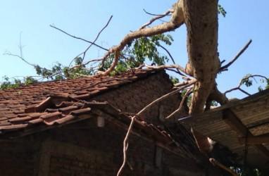 Hujan Angin Guyur Bantul Sejak Jumat Sore hingga Sabtu Pagi, Puluhan Pohon Tumbang Timpa Rumah