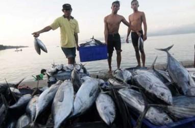 Ekspor Perikanan dari Natuna Terus Meningkat