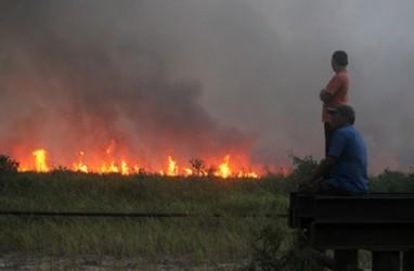 BMKG: 6 Titik Panas Terdeteksi di Riau