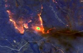 Asap Kebakaran Australia Mengangkasa Hingga Argentina