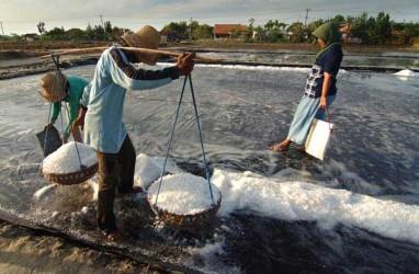 Ratusan Ribu Ton Garam Rakyat di Madura Tak Terserap Pasar