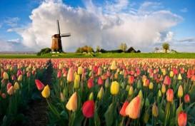 Overtourism, Belanda Hapus Sebutan Holland Mulai Tahun Ini