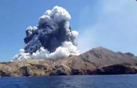 Gunung White Island Erupsi, Korban Meninggal 18 Orang