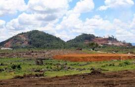Investasi Smelter di Galang Bintan Sudah Dikucurkan Rp4,9 Triliun