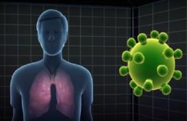 WHO Khawatirkan Dugaan Kasus Pneumonia dari China di Thailand