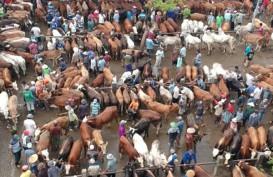 Bantul Menyemprotkan Disinfektan di Pasar Cegah Antraks