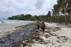 Limbah Minyak Mencemari Kawasan Pantai Bintan