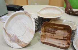 Produk Ramah Lingkungan : Piring Pelepah Pinang Pengganti Plastik dari Muba