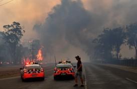Kebakaran Hutan Australia Ancam Produksi Batu Bara