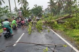 Angin Kencang Terjang Sejumlah Wilayah Kabupaten Magelang