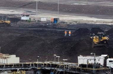 Produksi Batu Bara Samindo Resources (MYOH) Naik Tipis, Ini Pemicunya