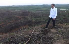 Jokowi Kembali Singgung Rencana Ibu Kota Baru